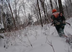 Simple Training Strategies for Hunting Performance